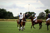 White Rose Polo 013
