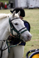 2013 Osmotherley Show 058