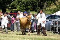 2013 Osmotherley Show 189