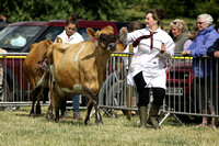 2013 Osmotherley Show - Grand Parade