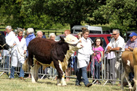 2013 Osmotherley Show 191