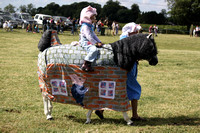 2013 Osmotherley Show - Fancy Dress