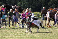 2013 Osmotherley Show 255