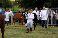 2013 Osmotherley Show 200