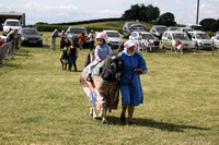 2013 Osmotherley Show 259
