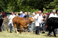 2013 Osmotherley Show 196