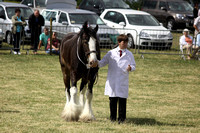 2013 Osmotherley Show 099