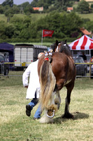 2013 Osmotherley Show 092