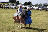 2013 Osmotherley Show 260