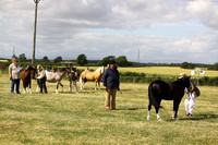2013 Osmotherley Show - Highlights