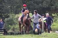 Hurworth Hunt Hedge Hop 008