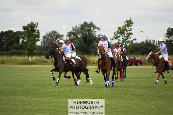White Rose Polo 004