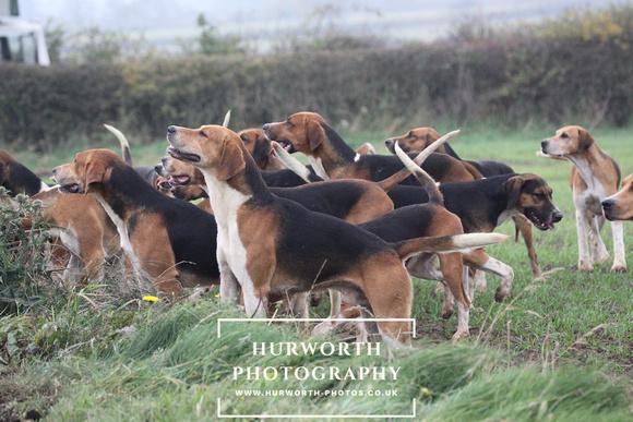 hurworth hunt opening meet the deedles