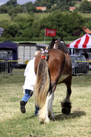 2013 Osmotherley Show 091