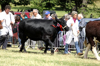 2013 Osmotherley Show 193